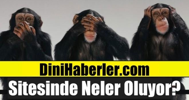 DiniHaberler.com Sitesine Ne Oluyor?