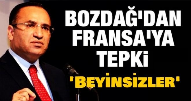 Hükümet Sözcüsü ve Başbakan Yardımcısı Bekir Bozdağ,' Beyinsizler'