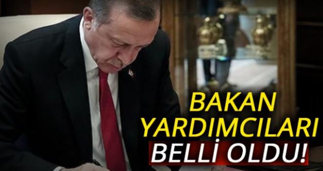 Cumhurbaşkanı Erdoğan bakan yardımcılarını atadı