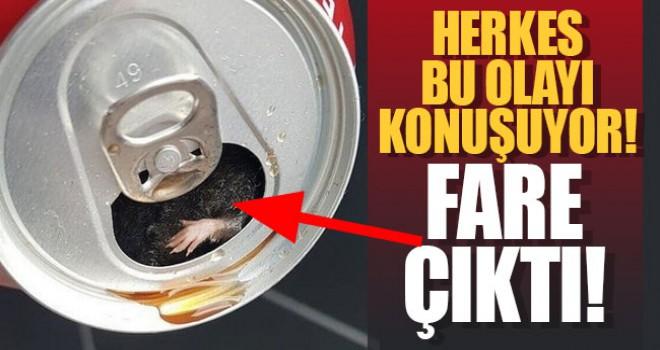 Coca Cola kutusundan ölü fare çıktı