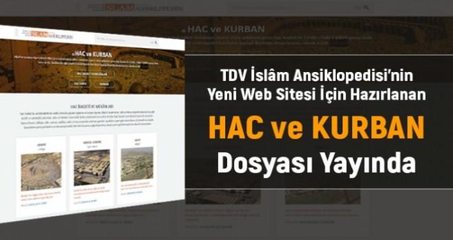 TDV İslam Ansiklopedisi'nden Büyük Hizmet