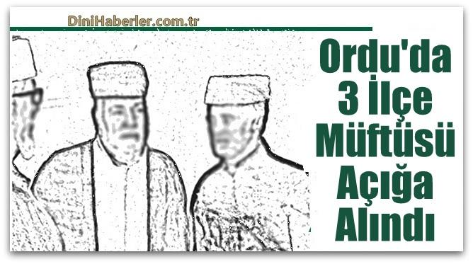 Ordu\'da 3 ilçe müftüsü 8 Kur\'an Kursu Öğreticisi görevden alındı