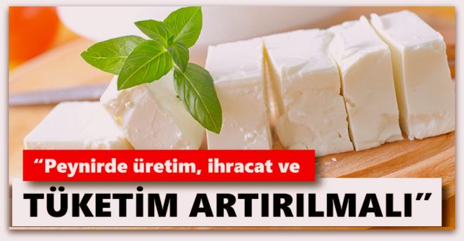 Sütün geleceği peynirde…