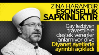 Diyanet'ten Zina ve Eşcinsel İlişki açıklaması