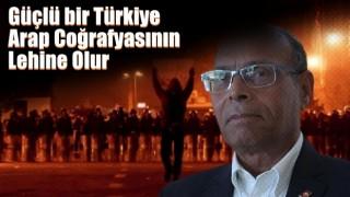 Güçlü bir Türkiye Arap coğrafyasının lehine