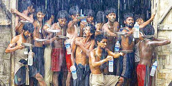 Yağmur suyu ile hayatta kalma mücadelesi...