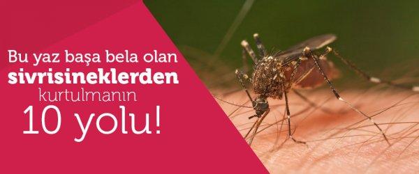 Baş belası sivrisineklerden kurtulmanın 10 yolu!