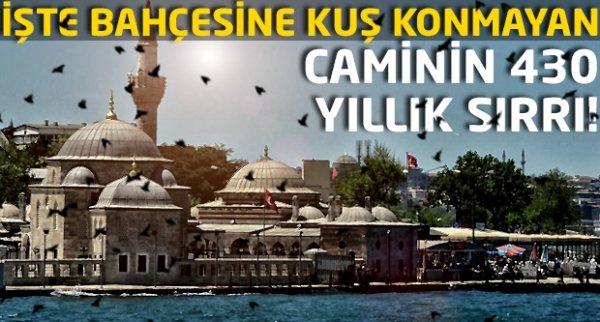 Kuşların konamadığı cami: Şemsi Paşa Camii