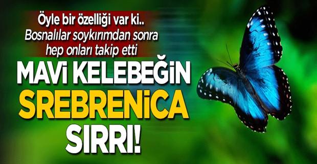 Mavi kelebeğin \'Srebrenica\' sırrı