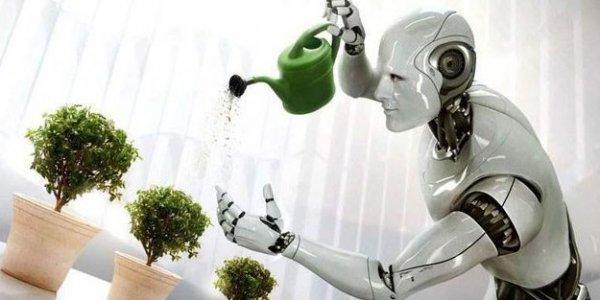 Robotların da dini inancı olacak