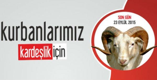 Türkiye Diyanet Vakfı kurban vekalet alımına başladı